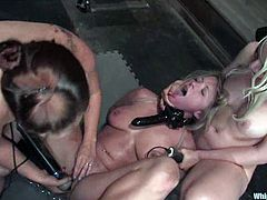 Dia Zerva the poor blonde bitch gets fingered and then bonded. After that she gets her pussy toyed with a vibrator and a strap-on. In addition she licks her mistresses' pussies.