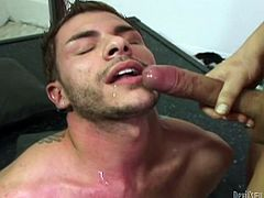 Salacious blonde shemale Jesse Flores is having fun with handsome poofter Tristan Mathews. Tristan favours Jesse with a great blowjob and then takes a ride on the ladyboy's wang.