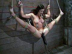 Wenona the hot brunette slut gets tied up. She hangs on the wall and also gets her tits tortured. After that she gets her vagina drilled.