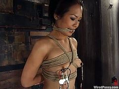 Sexy Asian hottie Nyomi Zen shows her smooth pussy to Princess Donna Dolore and lets the dominatrix attach wires to it. Then Donna humiliates the girl and smashes her vag with a dildo.