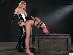 Femdom is what this porn video about. Horny Aiden Starr is taking over Annabelle Lee's twat in a very rough manner. Still, Lee loves such an attitude!