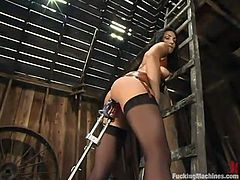 Beautiful brunette Wenona wearing stockings is having fun in a basement. She strokes her gorgeous body and then gets her coochie ripped apart by a fucking machine.