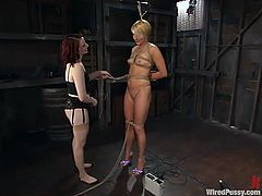 Lewd blonde milf Vendetta is having fun with some lesbian in a basement. The mistress binds and hangs the slut up, then attaches wires to her body and smashes her vag with a strapon.