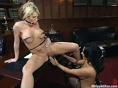 Brunette dominatrix Sandra Romain is playing BDSM games with Brooke Haven. Sandra binds Brooke and makes her eat her snatch and then fucks her pussy with a strapon.