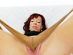 a taste of pantyhose and pussy