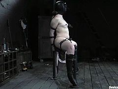 Brunette chick gets blindfolded and tied up. She sits on a bondage device with her legs wide opened getting her pussy drilled by the fucking machine.