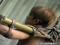 Japanese redhead water torture