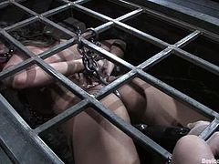 Trina Michaels gets tortured and enjoys having toys in her holes