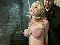 Nice Madison Scott gets tied up and humiliated