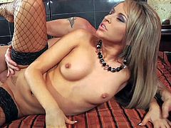 Aleska Diamond is a sexy bodied porn diva that loves hard pussy fucking. Horny beauty with perky tits and nice ass gets her trimmed pussy banged. She enjoys sex with her stockings on.