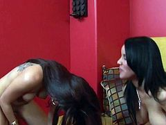 Daisy Marie and Helena Heirres have crazy lezbo funtime