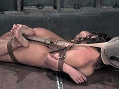 Eva Angelina gets bound and tormented and likes it much