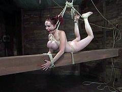 Naughty redhead chick with huge boobs gets tied up and blindfolded. Then her master twists the boobs and suspends Mz Berlin.