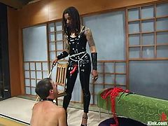What an outstanding girl Mistress Heart is! She has a true look of a mistress and her passion is on torturing Wild Bill! Nice femdom BDSM to watch!