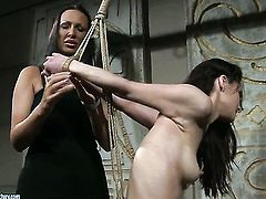 Brunette Mandy Bright and Aleksandra Black kill time playing with each others wet hole