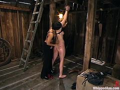 Two lusts are in a BDSM. Well, Dragon Lily is in her profile of dominating bitch and she lures Jolene in her traps. Damn, blondie is in pain!