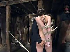Bound Faith Leon gets toyed with a dildo and a vibrator