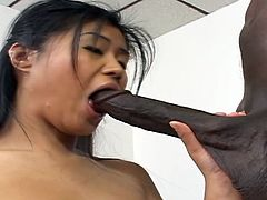 Naughty Asian girl strips her clothes off in a classroom and then starts to suck big black cock. Later on she lies down on a table and gets her tight pussy fucked hard.