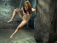 Submissive Japanese girl gets tied up and gagged. Later on she gets her her titties tortured with claws and shaved pussy toyed.