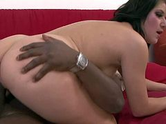 Turned on wild an experienced Steve Q and his tall black friend with long stiff monster cock play with Lucy Bell reveal to her joys of double anal action.