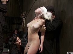 Delightful and slender babe Lorelei Lee gets suspended and seated on the fucking machine. Well, it makes the pain shadowed!