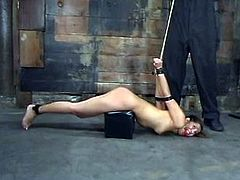 Sexy chick gets undressed and then tied up. After that she also gets her tits tortured. Then she also gets toyed with a dildo and a vibrator.