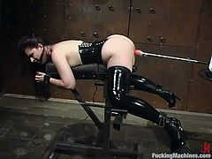 Horny girl gets her juicy vagina toyed deep and hard by the fucking machine in close-up scenes. After that she gets tied up and toyed again.