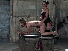Sexy office chick gets tied up and undressed. Sara licks Sandra's vagina and then gets pored with hot wax. Later on she gets her pussy whipped and toyed with a vibrator.
