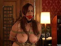 Bella Rossi and Cherry Torn get gagged and tied up. After that they suck big hard cocks with pleasure.