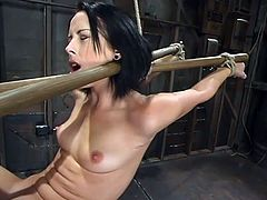 Lovely brunette girl gets gagged and tied up by her Master. Later on he toys her shaved pussy with a vibrator and fixes claws to her nipples.