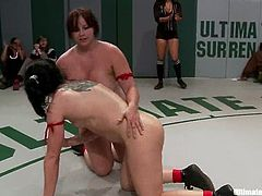 They are going to wrestle and finally wind up with some hot lesbian threesome. Strapons are ready and their pussies are warmed up.