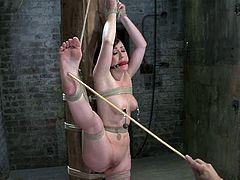 Gagged and bound brunette babe gets her feet whipped with a stick. Later on she also gets her vagina toyed with a vibrator.