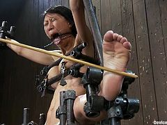 Tia Ling gets her feet whipped and mouth gagged with a spider gag. Then she gets her tight Asian pussy toyed with a vibrator.