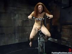Curly-haired chick Randi is testing a fucking machine in a basement. She gets her holes stuffed with dildos and enjoys a hot raunchy moment.