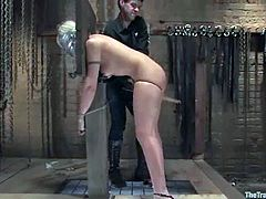 Lewd blonde Satine Phoenix is getting naughty with Maestro in a basement. She pleases the dude with a blowjob and then gets her ass beaten hard.