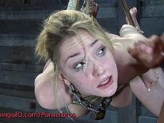 Hot blonde girl is tied up, hanging in the air totally submitted to her master's whishes. Babe gets her pussy and her mouth fucked hard and deep, you can't miss this BDSM scene.