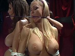 Summer Cummings, Shay Sights, Tanya Danielle and Kianna Dior humiliate themselves in this BDSM video. These sirens love to be tortured like slaves.