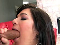 Salacious brunette Gabriella Romano strips and shows her body to her BF. Then she sucks his dick and they have some naughty doggy style banging.