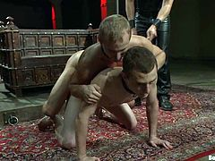 Van Darkholme and Christian Wilde are playing dirty games with two twinks. Van and Christian bind and suspend the fairies and then hurt their butts and cocks and fuck their brown caves deep and hard.