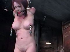 What a horny and kinky babe Kylie Ireland is! She gets naked and starts enjoying some wild pain she gets. Bondage, suspension and arching.