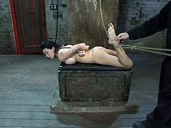 Horny brunette girl gets tied up and suspender above the floor by her master. Later on she gets whipped and fingered.