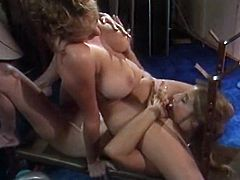 I always enjoy watching watching torrid gals with big tits making love with each other. These torrid lesbians are in love! They make each other cum pretty quickly caressing each other's pussies orally.