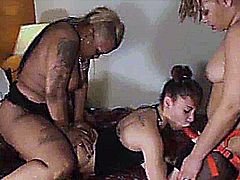 SUPER NEW = 3SOME PUNISHING SOME NEW YOUNG PUSSY STRAPPED UP!! 2014 ...  SEE it all now at WWW.MAGICPRODUCTIONSINC.COM
