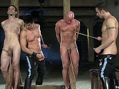 Submissive dudes get tied up by their masters. Then they get whipped painfully. Of course then they get ass fucked in doggystyle pose.