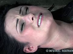 Infernal Restraints brings you a hell of a free porn video where you can see how the hot brunette Veruca James gets tied up and abused by her master til she cums.