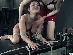 Brunette Charley gets tied up and suspended by kinky German mistress. After that Charley gets toyed and whipped by Annette.