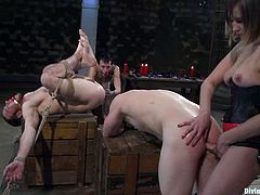 Submissive guys get tied up and blindfolded by Jessie Sparkles. Then they get their dicks tortured and asses toyed with a strap-on.
