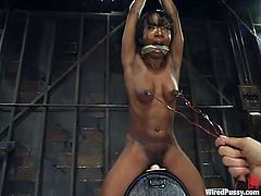 This juicy and sassy honey Stacey Cash gets naked and starts feeling so fucking good, when her white mistress starts abusing her!