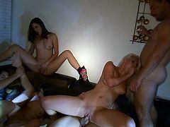 A group of hot chicks giving head and tail in this amazing orgy scene right here with horny studs pounding them. Check it out!