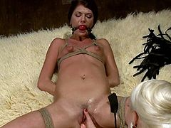 Stunning brunette babe gets tied up and whipped by her blonde mistress. Later on she also gets her tits and pussy clothespinned. Of course she also gets toyed with a strap-on.